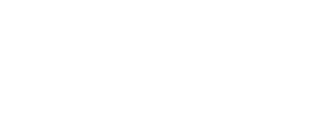BVS Performace Solutions Logo